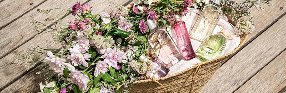 Perfume and Fragrances - L'Occitane