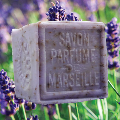 shop/crushed-lavender-french-soap-cube.html